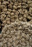 веревочка вороха Стоковая Фотография RF