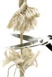 веревочка вырезывания Стоковые Фото