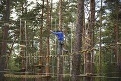 Веревочка мальчика взбираясь в лесе Стоковое фото RF
