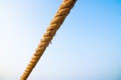 Веревочка Манилы на голубом небе Стоковые Изображения RF