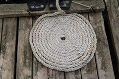 Веревочка моря переплела в кольцо Стоковая Фотография