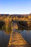 веревочка моста Стоковая Фотография RF