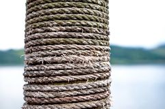 Веревочка на древесине Стоковое Фото