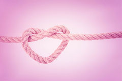 Веревочка поводка в форму сердца стоковые изображения