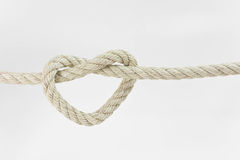 Веревочка поводка в форму сердца Стоковые Изображения RF
