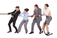 Веревочка предпринимателей вытягивая Стоковые Фотографии RF