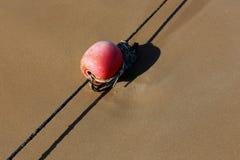 Веревочка с поплавками на seashore стоковое фото