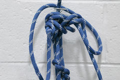 веревочка узлов Стоковые Фото