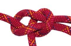 Веревочка узла булиня красная Стоковое Изображение