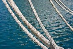 веревочка Стоковое фото RF