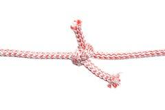 веревочка 2 узлов Стоковое фото RF