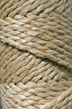 веревочка Стоковые Изображения