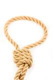 веревочка Стоковое Изображение RF