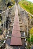 веревочка rede carrick моста Стоковое Изображение RF