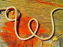 Веревочка w письма алфавита западная Стоковые Изображения RF