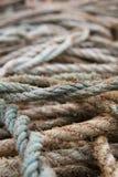 веревочки беспорядка Стоковая Фотография RF