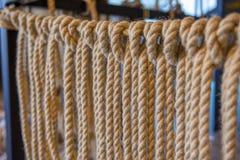 Веревочки моря стоковые фотографии rf