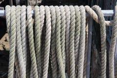веревочки Стоковое фото RF