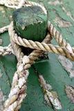 веревочки Стоковое Изображение RF