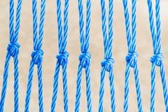 Веревочки Nyron с узлом Стоковая Фотография