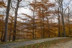 Вермонт в осени Стоковая Фотография RF