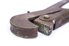 Верньерный инструмент poen Стоковое Изображение RF