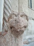 Верона - собор - парадный вход - правый грифон стоковое фото