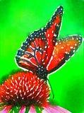 0 версий иллюстрации eps 8 бабочек vailable стоковое фото
