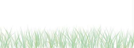 версия абстрактных gras светлая Стоковые Изображения