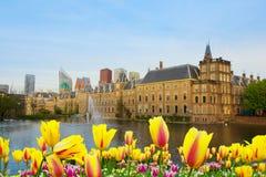 Вертеп Haag, Нидерланды Стоковое Изображение
