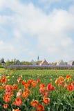 Вертеп Hoorn деревни на голландце Texel Стоковое Фото