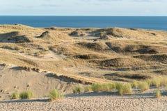 вертел моря прибалтийского свободного полета curonian Стоковая Фотография