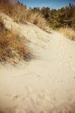 Вертел Curonian национального парка Стоковое Изображение RF