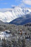 Вертикальное изображение ландшафта кабин в парке зимы, Колорадо стоковое изображение rf
