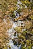 Вертикальные каскадируя водопады горы в поле Больдэра Стоковое Изображение RF