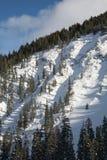 Вертикальный горный вид ландшафта парка зимы, Колорадо стоковая фотография rf