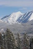 Вертикальный горный вид ландшафта парка зимы, Колорадо стоковое фото rf