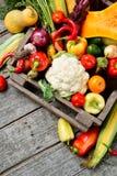 Вертикальный сырцовый органический комплект свежих овощей в лесистой предпосылке коробки Сбор осени от сада Стоковая Фотография RF