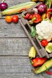 Вертикальный сырцовый органический комплект свежих овощей в лесистой предпосылке коробки Сбор осени от сада Стоковое Изображение