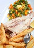 вертикаль зажженная рыбами Стоковая Фотография
