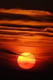 вертикаль заходящего солнца Стоковое фото RF