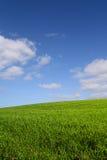 вертикаль зеленого холма Стоковые Изображения RF