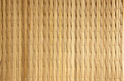 вертикаль papyrus предпосылки естественная Стоковая Фотография