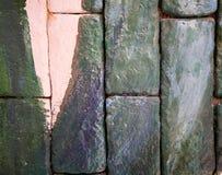 Вертикальная зеленоватая кирпичная стена для текстуры и предпосылки Стоковые Изображения RF