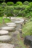 Вертикальная сосна, каменная дорога в японском саде Дзэн Стоковые Фотографии RF