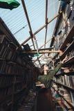 Вертикальное изображение девушки в библиотеке Стоковая Фотография