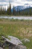 Вертикальное mountainscape с ледниками, водой, и утесами Стоковое Изображение RF