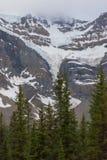 Вертикальное mountainscape с ледниками и соснами mutiple Стоковые Фотографии RF