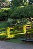 Вертикальный взгляд зеленых пути и деревянной скамьи Стоковое фото RF