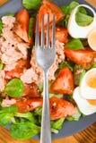 Вертикаль делая домодельный среднеземноморской салат с оливковым маслом Стоковая Фотография RF